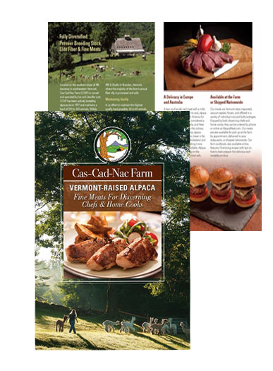 Brochures by Pam Knights Communications