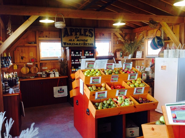 Scott Farm Orchard Farm Market
