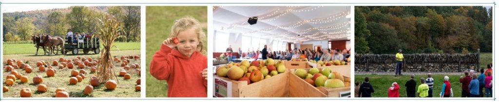 Pumpkin and Strawberry Festivals at Cedar Circle Farm, Heirloom Apple Day at Scott Farm Orchard