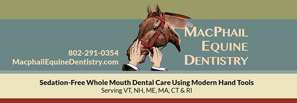 Facebook page cover photo forMacPhail Equine Dentistry