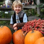 Cedar Circle Farms pumpkin festival