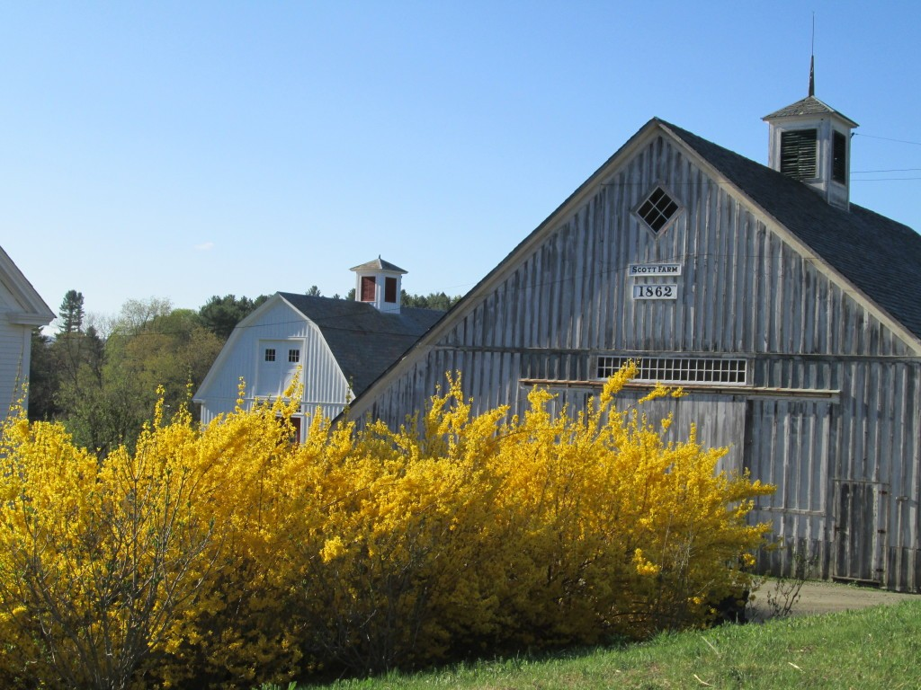 Scott Farm Orchard barn
